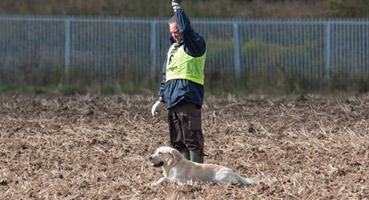 IPO & Fährtenhundesport